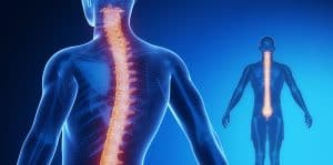 Illustration Of A Man Highlighting His Spine To Draw Focus On Spinal Injuries